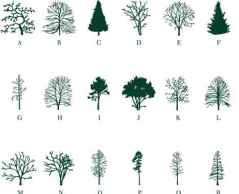 Foliage-Encoded Typefaces