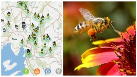 Nectar-Rich Bee Highways - Oslo Planted Bee-Friendly Flowers to Support the Dwindling Bee Population
