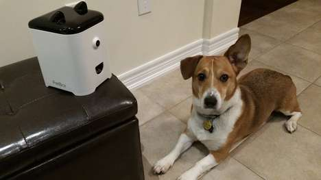 Dog Selfie Cameras - This Little Robot Feeds Pets Treats and Sends Selfies to Owners' Smartphones