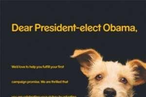 Pedigree's Obama Dog Adoption Campaign