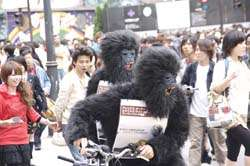Guerrilla Album Campaigns