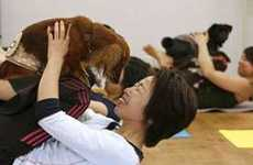 Asanas for Animals - Crunch Gyms Offer 'Ruff Yoga' Classes