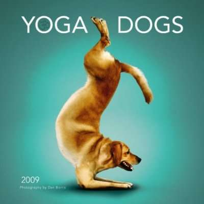 Canine Yogi Calendars - 'Yoga Dogs' by Dan Borris