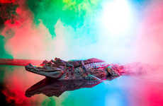 Neon Crocodile Photographs