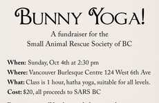 Rabbit Yoga Classes - The Small Animal Rescue Society of BC is Hosting a Bunny Yoga Event