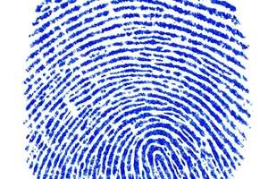 10 Biometric Payment Innovations - From Palm Print Payment Services to Biometric Credit Cards