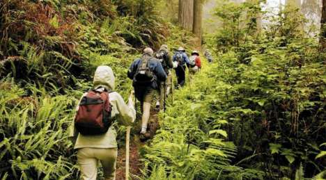 Rejuvenating Forest Retreats - This Wilderness Awareness School Event Encourages 'Forest Bathing'