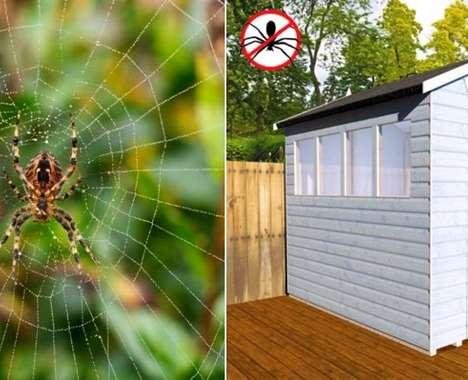 Spider-Proof Sheds