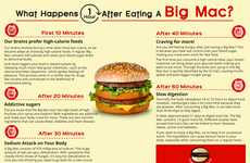 Digestive Burger Infographics - This Chart Explains What Happens to the Body After Eating a Big Mac
