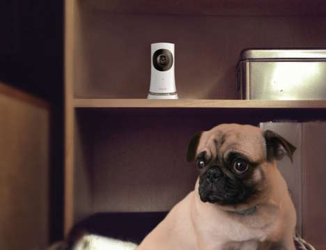 Discreet Security Systems - The In.Sight Wireless HD Home Monitor by Philips Can Be Placed Anywhere