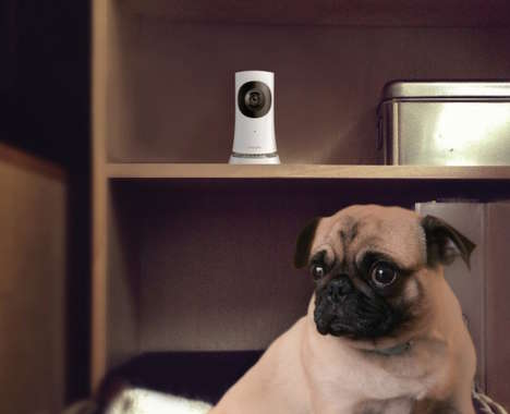 Discreet Security Systems