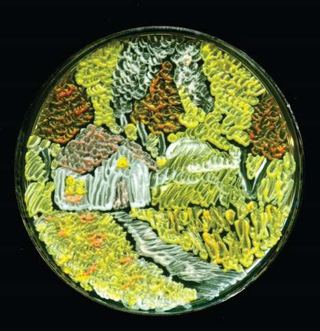 Petri Dish Art - These Bacterial Art Pieces Were Created Using Living Microorganisms