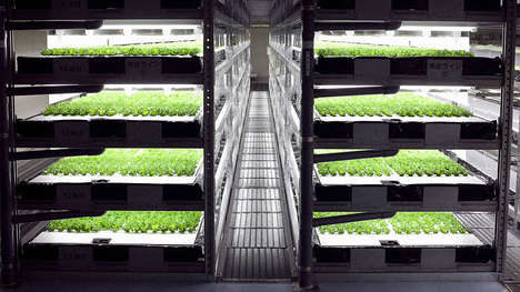Robot-Run Indoor Farms - This Japanese Vegetable Factory Will Operate Without Human Labor