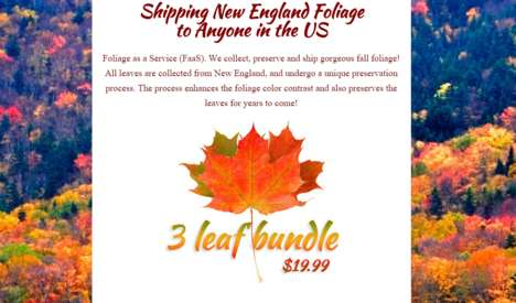 Festive Foliage Deliveries - This Company Will Mail Customers Fall Leaves from New England