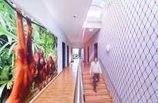 Zoological Office Designs