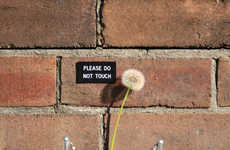 Humorous Sign Art