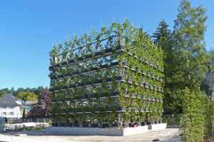 This Design System Has Buildings Intertwined with Trees and Plants