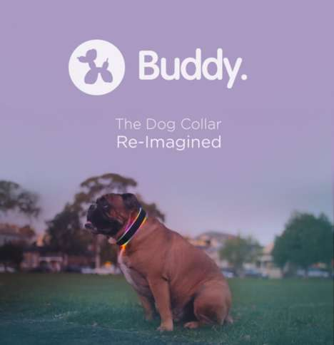 Hi-Tech Dog Collars - The 'Buddy' Dog Collar Can Track Your Pet's Whereabouts Via GPS