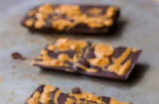 Homemade Peanut Butter Bars - These DIY Chocolate Bars are Made from Just Two Ingredients