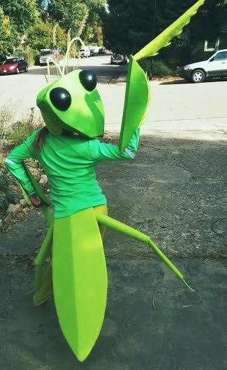 Homemade Mantis Costumes - This Adorable Insect Outfit is Great for Kids that Love Bugs