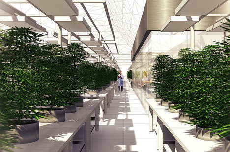 Experiential Cannabis Tours - The US's 1st Weedery is Opening Complete with a Restaurant & Gift Shop