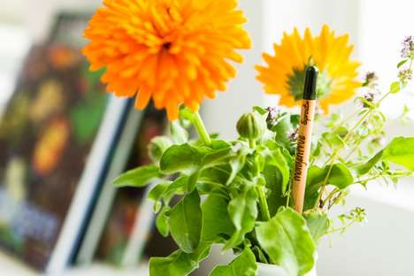 Plantable Garden Pencils - Sprout World's Pencils Blossom When Potted and Watered
