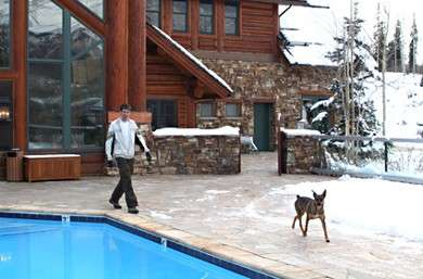 Pampered Pets Enjoy The High Life at Top Resorts