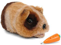 Gupi the Robot Guinea Pig