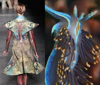Environment-Inspired Couture