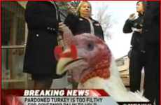 Thanksgiving Publicity Blunders