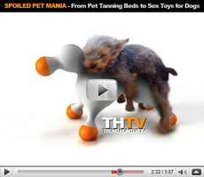Spoiled Pet Mania - Chicken Flavored Bubbles, Canine Mansions, and Love Dolls for Dogs