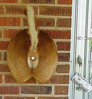 Redneck Doorbells
