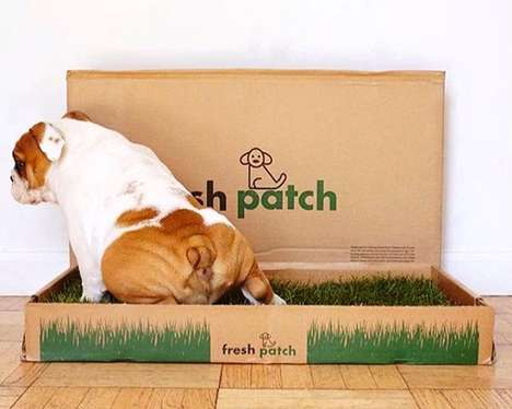 Grass Litter Boxes - The 'Fresh Patch' is a Training Mat for Dogs to Learn Not to Pee in the House