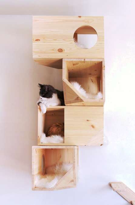 Geometric Cat Houses - This Wall-Mounted Cat House is Designed for Climbing, Sleeping and Playing