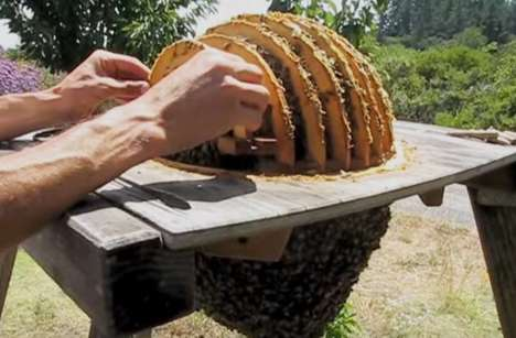 Cylindrical Beekeeping Units - The 'Sun Hive' Provides an Alternative Format for Natural Beekeepers