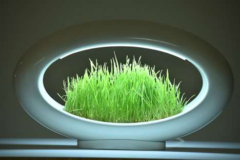 Bountiful Botanical Illuminators - The 'Grasslamp' Modern Lamp Design Enables the Growth of Plants