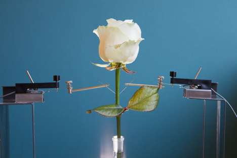 Color-Changing Bouquets - These Electronic Flowers are Capable of Changing Color