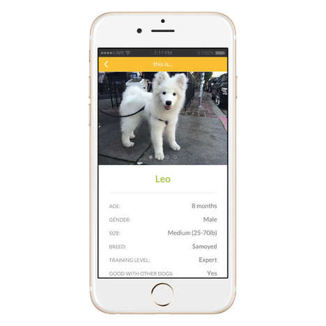 Dog-Borrowing Apps - Bark'N'Borrow Brings Dog Owners, Wannabe Owners and Professionals Together
