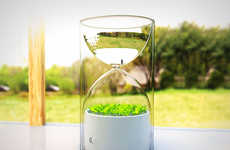 This Tiny Garden is Situated in an Hourglass to Fit Into One's Pocket