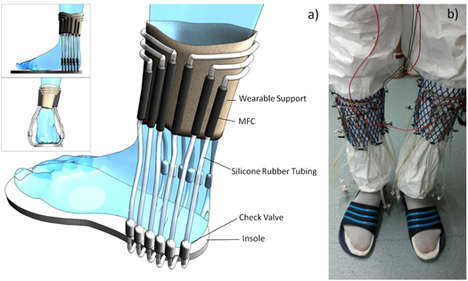 Pee-Powered Socks - These Pee-Powered Socks Can Convert Urine Into Electricity