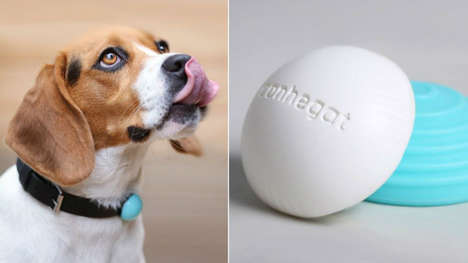 Canine Fitness Trackers - Canhegat's Canh-Fit Wearable Device Monitors a Pet's Health Levels