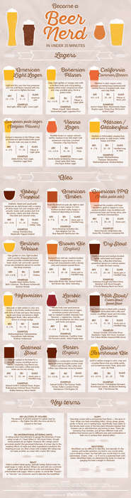 Explanatory Brew Guides - This Infographic Turns Readers into a Beer Expert in Under 20 Minutes