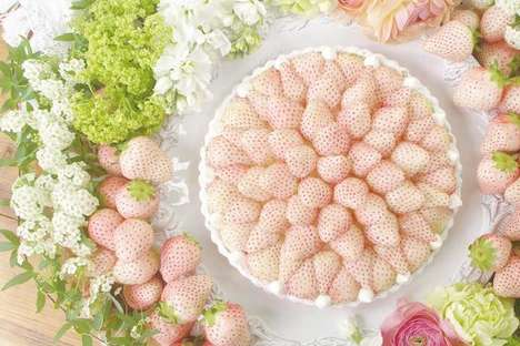 Sensory Romance Desserts - This Japanese Strawberry Tart is Made With White Strawberries