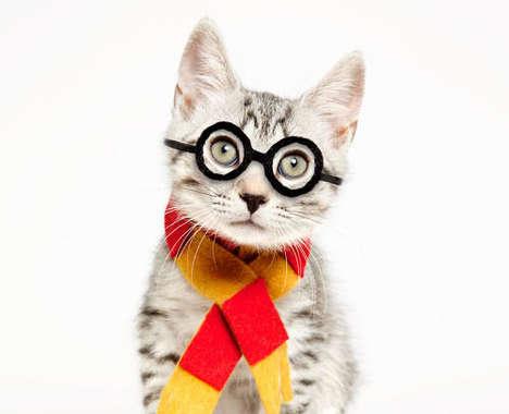 35 Playful Pet Costumes