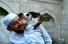 Cat-Sheltering Mosques - This Istanbul Mosque is Saving Homeless Cats from the Winter Weather