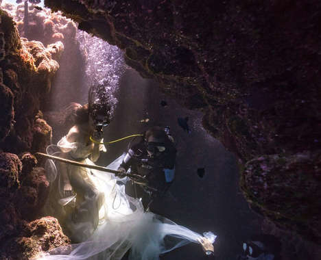 Heart-Pounding Underwater Photography