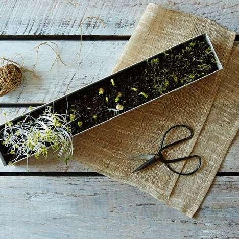 Kitchen Microgreens Kits - This Microgreens Box Kit Has Everything to Create a Windowsill Garden