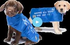 Free Puppies Forever Helps Raise Dogs for Seeing Eye Dogs Australia