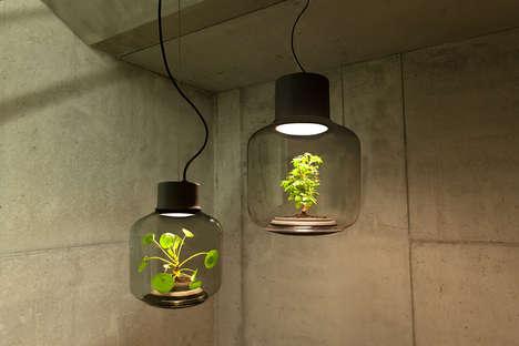 Hanging Terrarium Lamps - The 'Mygdal' Plant Light Incorporates a Living Shrub into the Illuminator