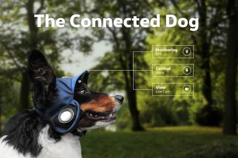 GPS Dog Hats - Volkswagen's 'Connected Dog' Concept Helps Pets Become Autonomous, Safely